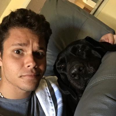 Vinicius's dog day care