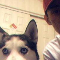 Juan's dog boarding