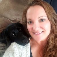 Arysta's dog day care