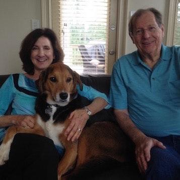 Marion & William's dog boarding