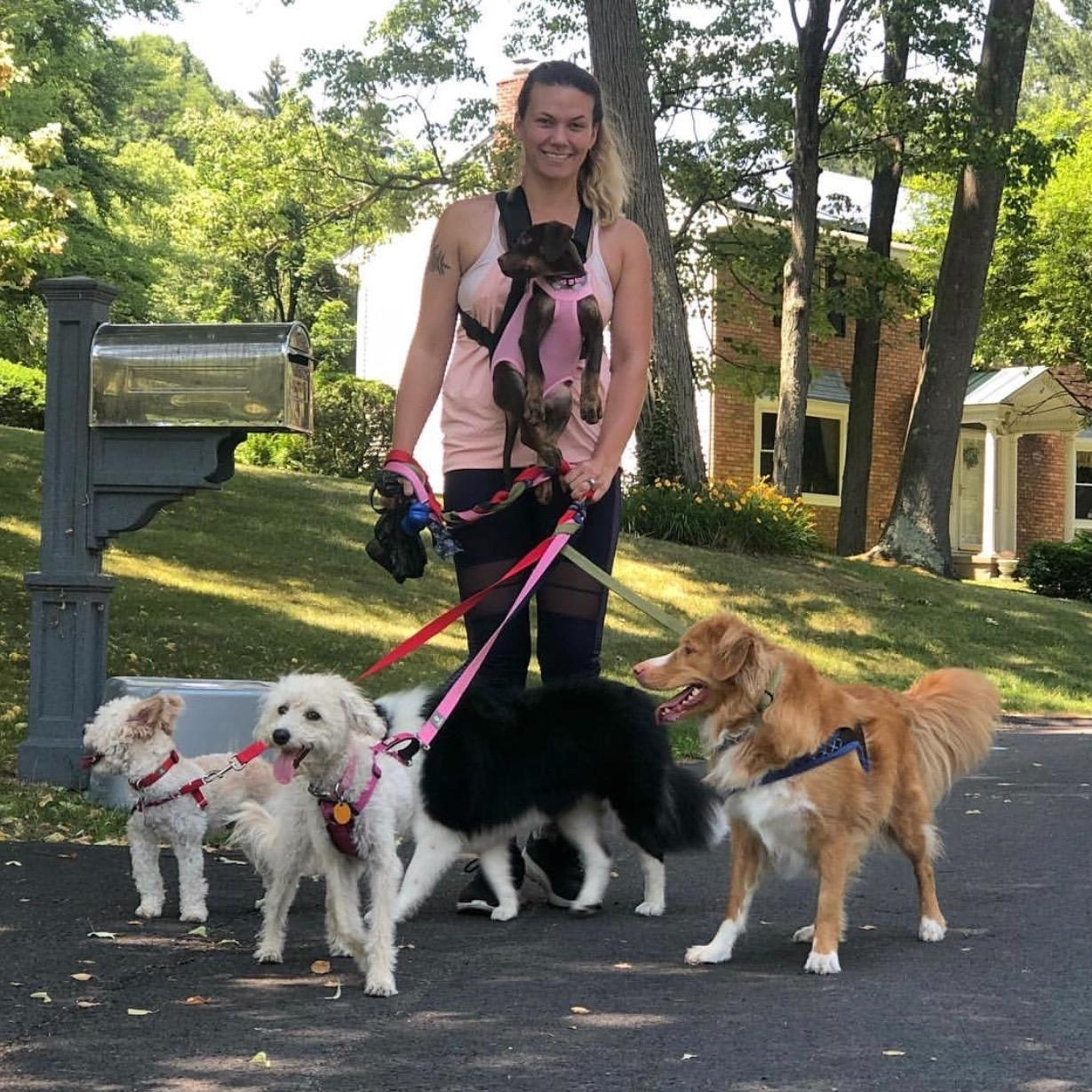 dog walker Tasha