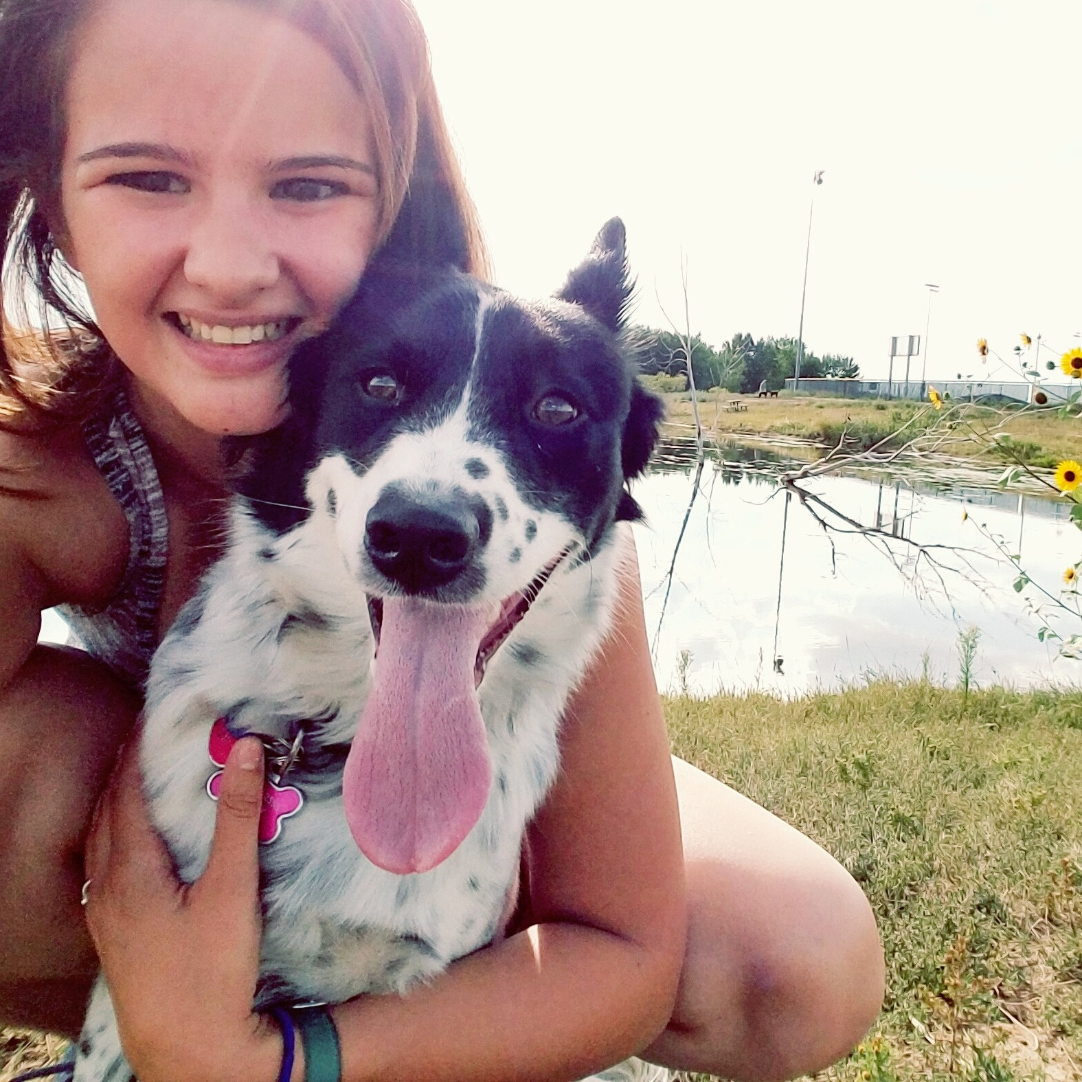 Brittney's dog day care