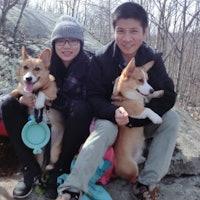 Zichen & Shanshan's dog boarding
