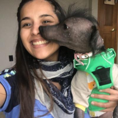Yesenia's dog day care
