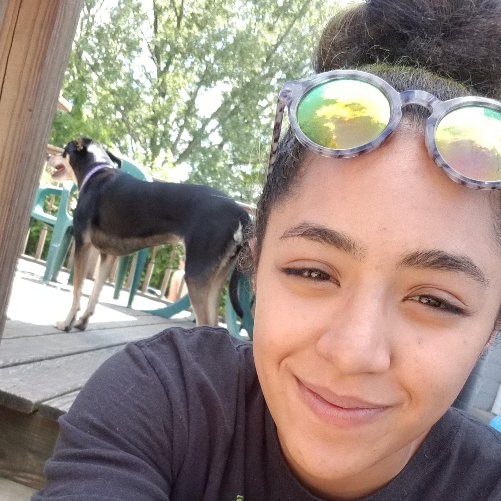 Aysha's dog day care