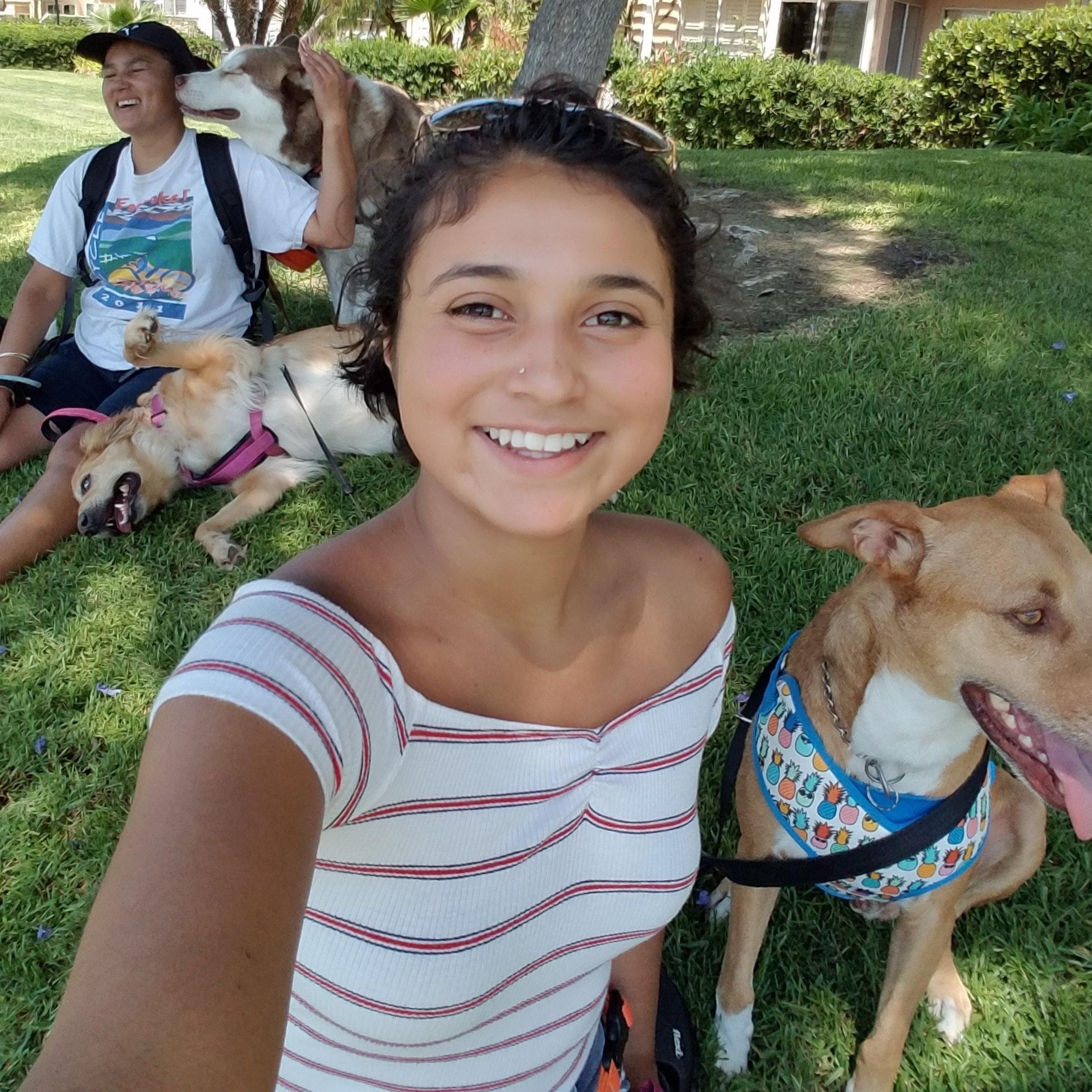 Janet & Karen's dog boarding