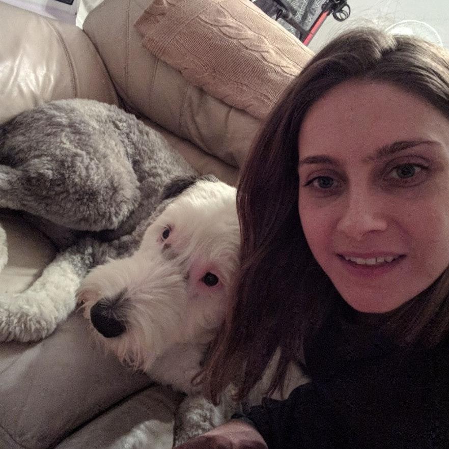 Suzanna's dog day care
