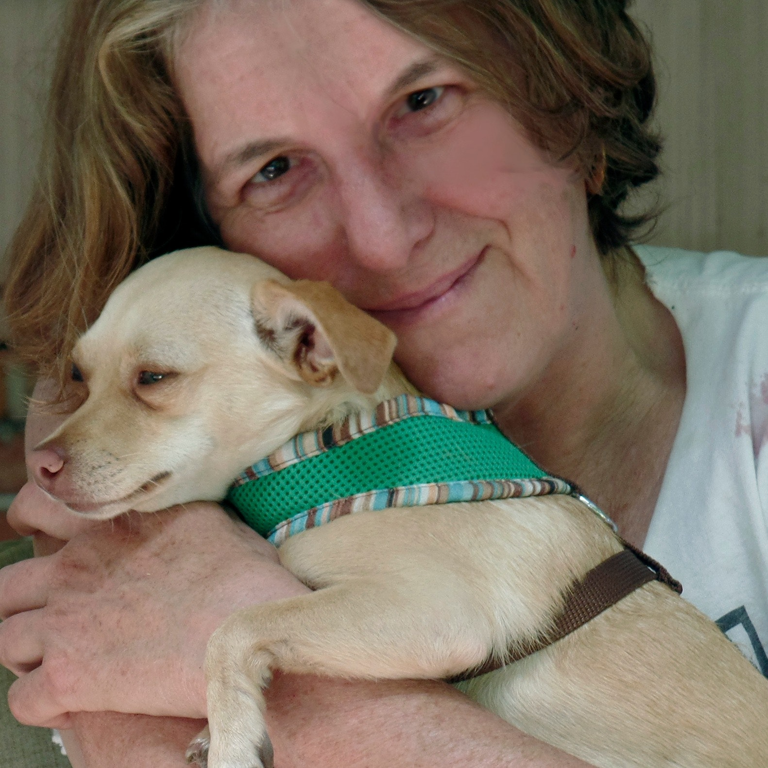 Mernie's dog day care