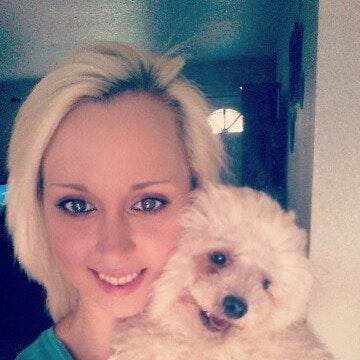 Lana's dog day care