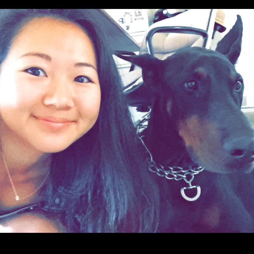 Seina Cyndi's dog day care