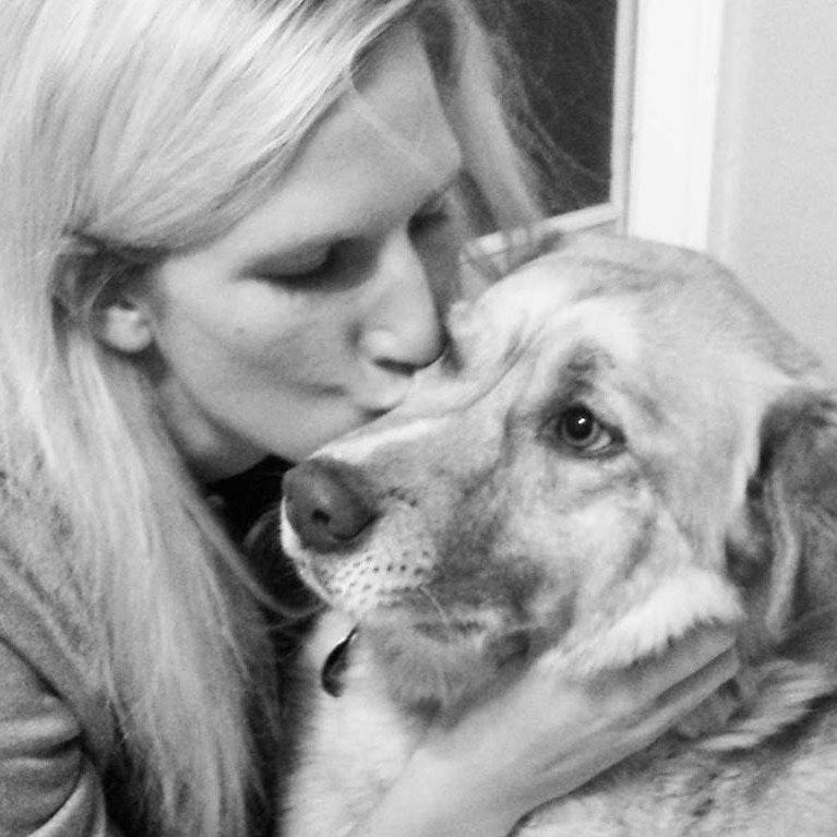 Elise's dog day care