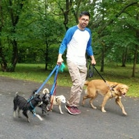 dog walker Ricardo