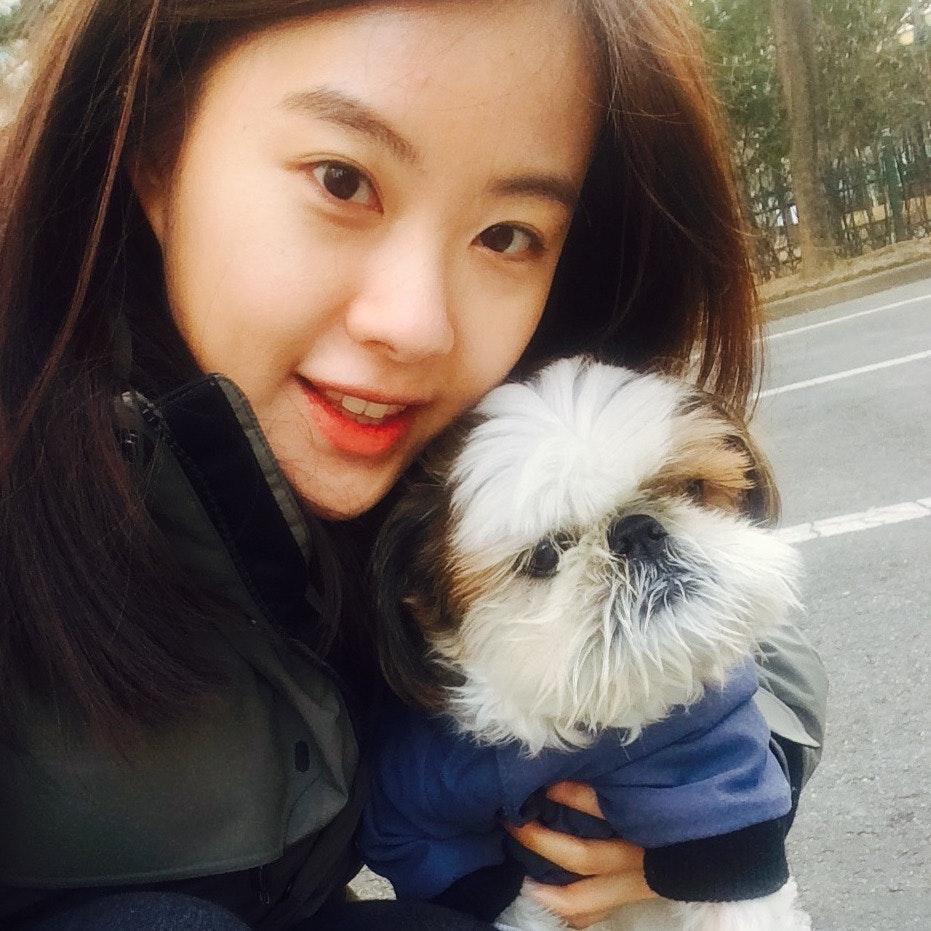 Sophia's dog boarding