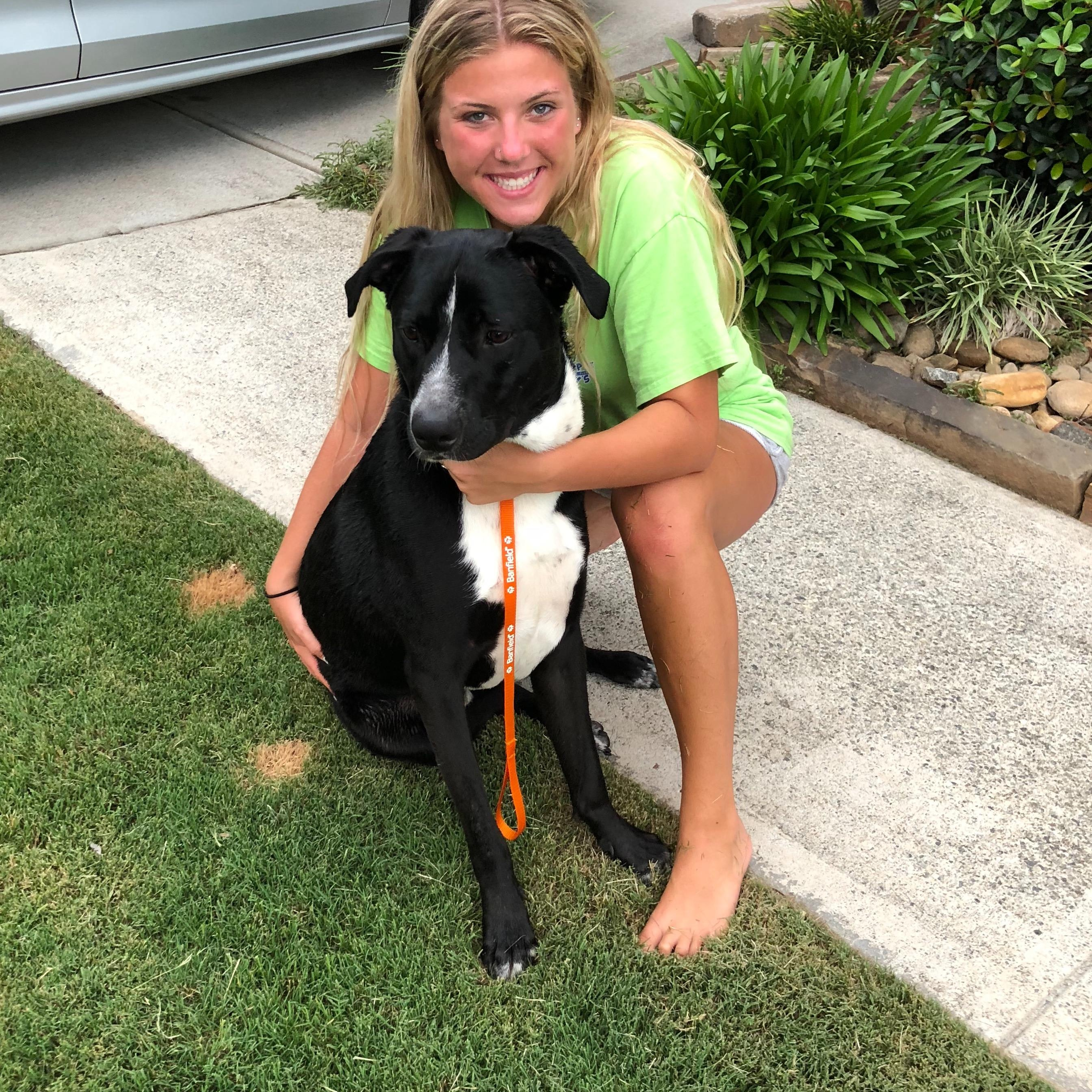 Mackenzie's dog day care