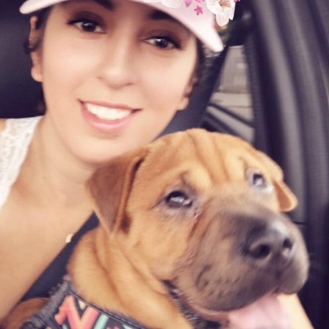 Celeste's dog day care