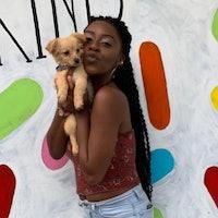 Tatyana's dog boarding