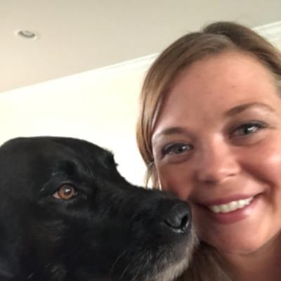 Aurora's dog day care
