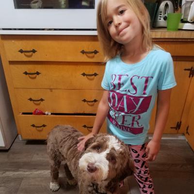 Tawnia's dog day care