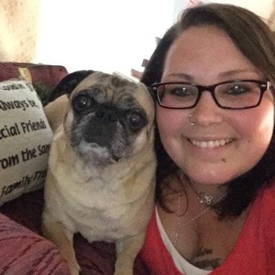 Katera's dog day care