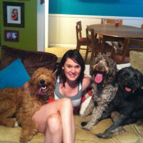 Kelsey & Heath's dog boarding