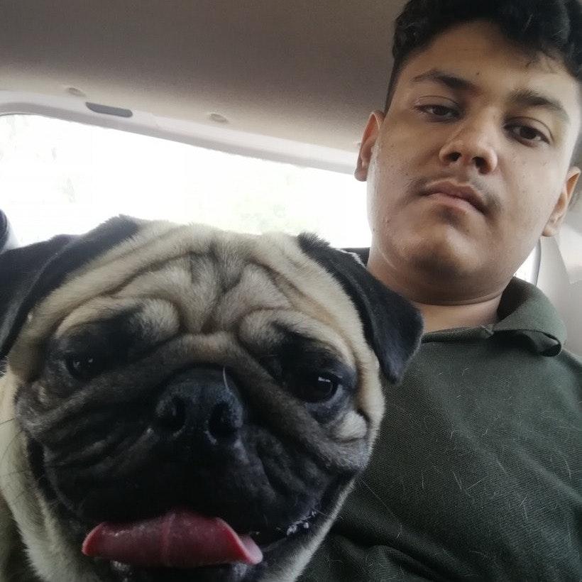 Govind's dog boarding