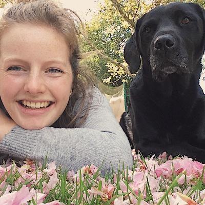 Sophie's dog boarding