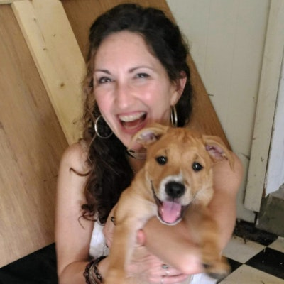 pet sitter Lisa Lyn-Dell