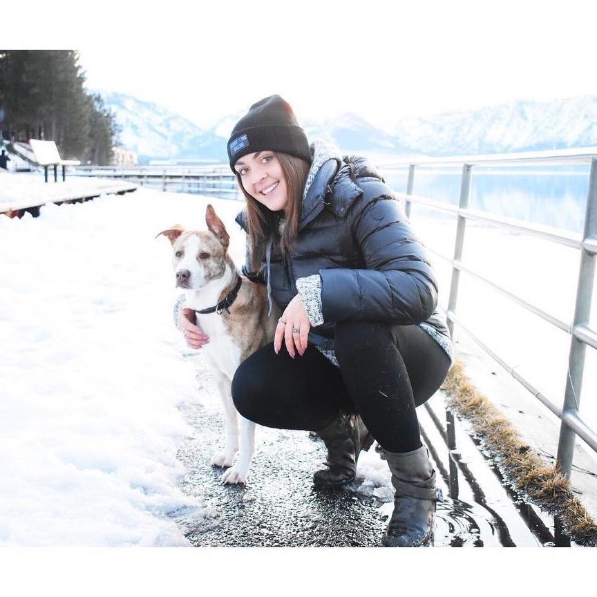 Jordyn's dog boarding