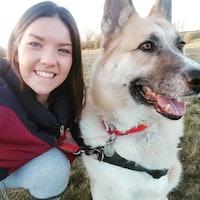 Ruth's dog boarding