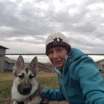 Rhea's dog day care