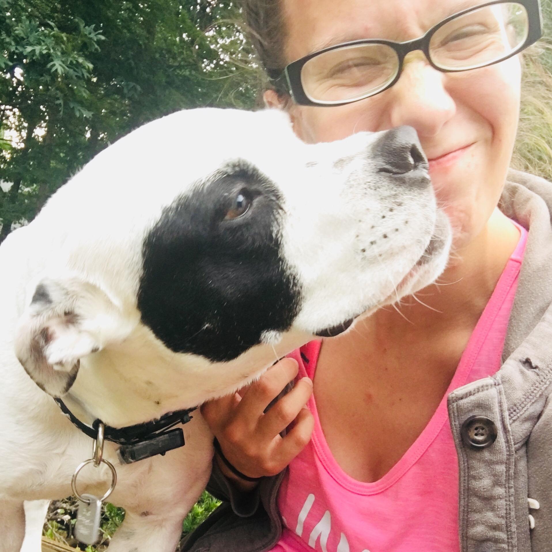 Kelsi's dog day care
