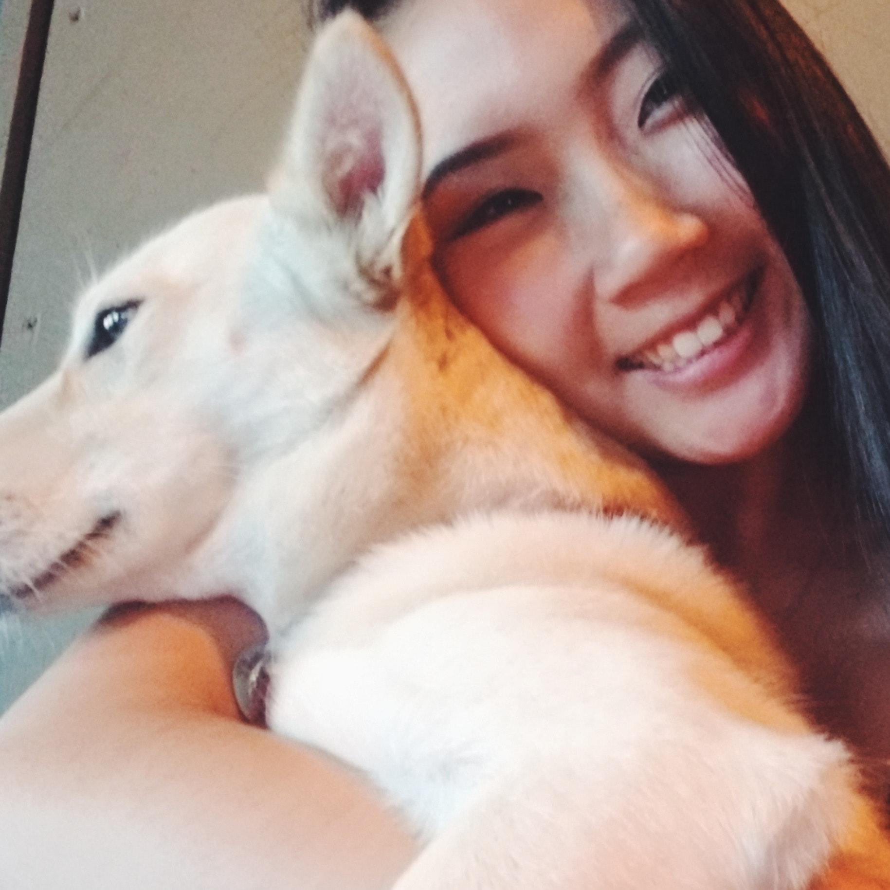 Winni's dog day care