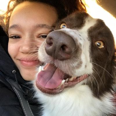 Brianna's dog boarding