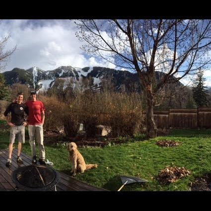 Brett's dog boarding