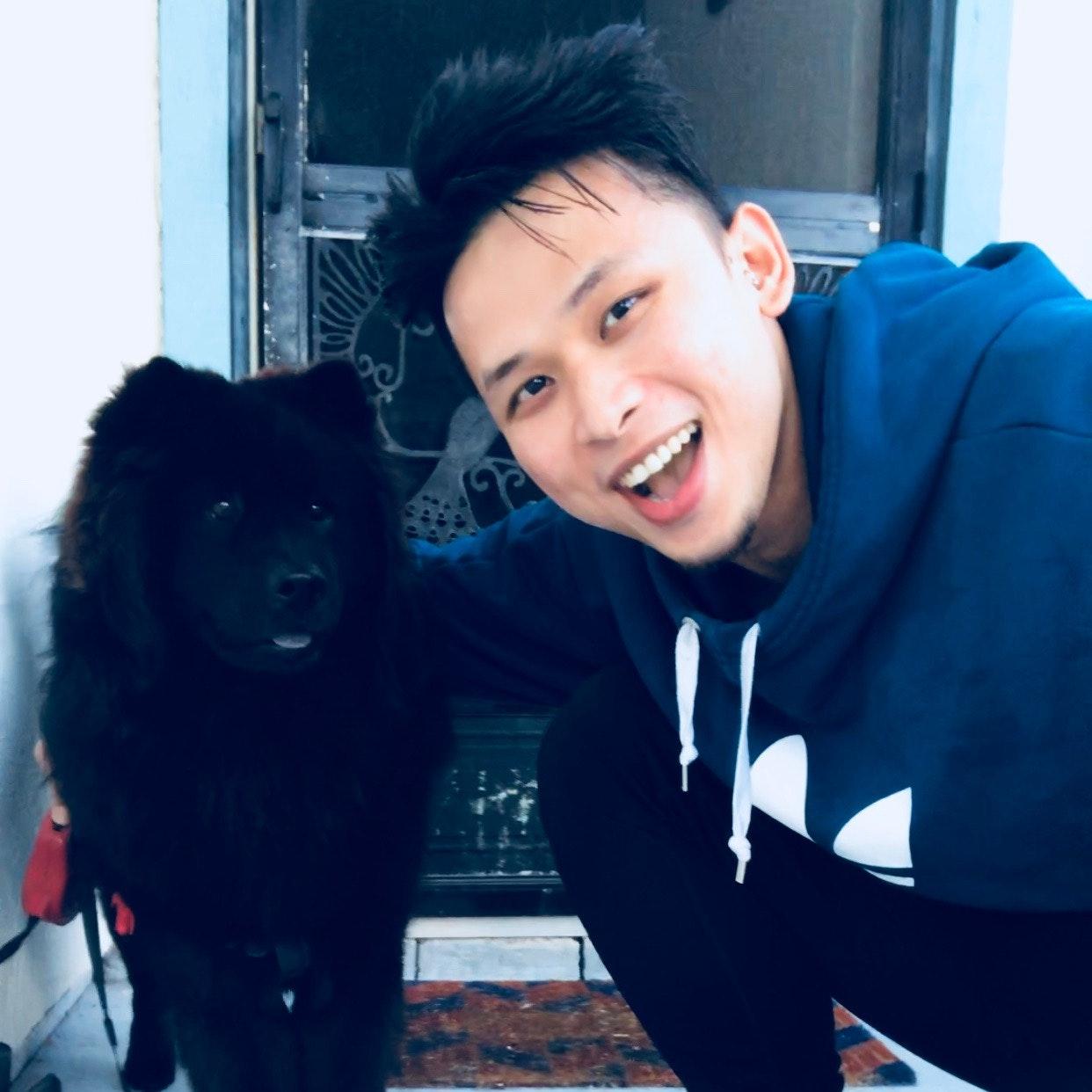 Mark's dog day care