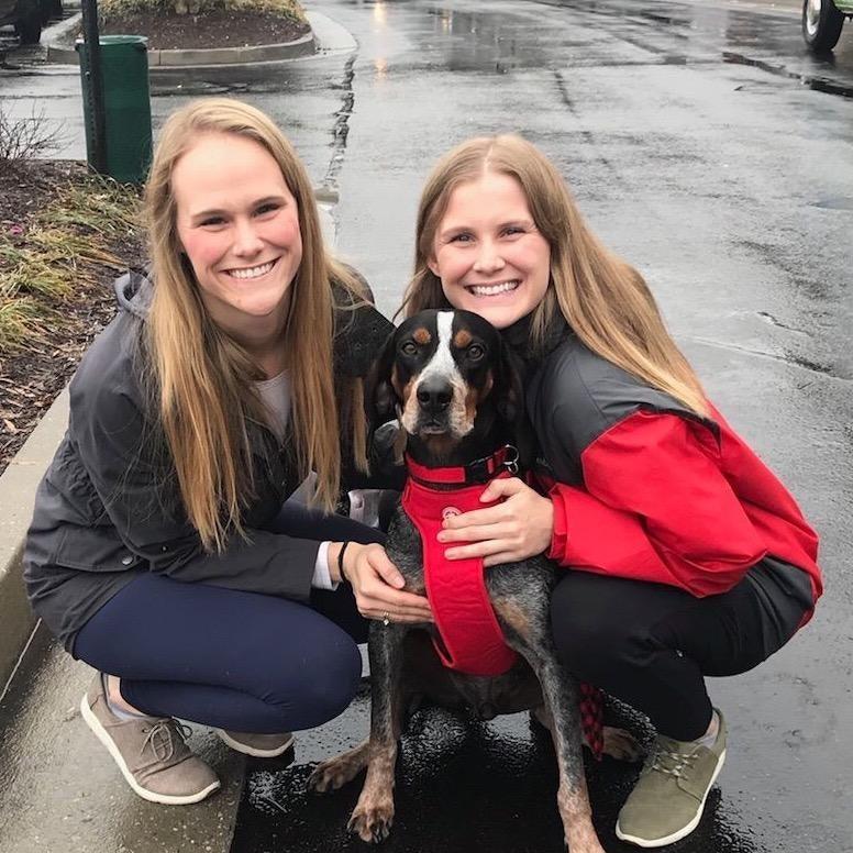 Brogen's dog day care