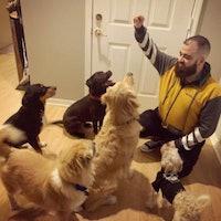 Ernesto's dog boarding