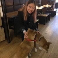 Marian's dog day care