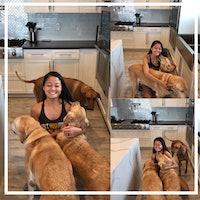 Mila's dog boarding