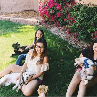 Gianna's dog boarding