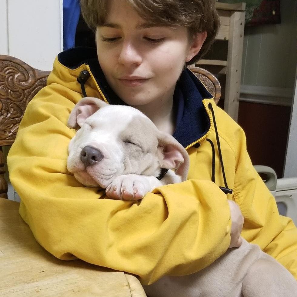 Landon's dog day care
