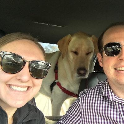 Toni's dog day care