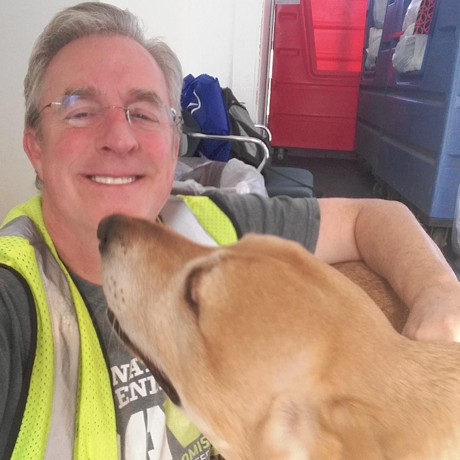 Denis's dog day care