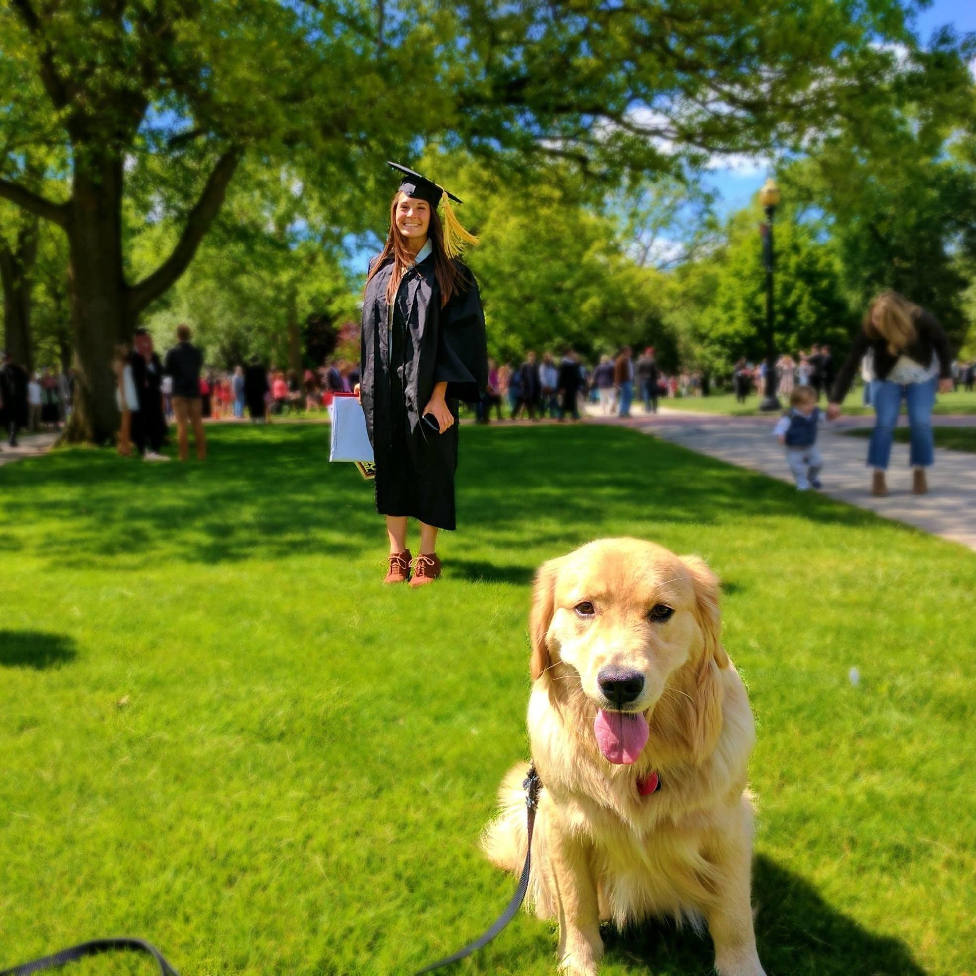 Rhema's dog boarding