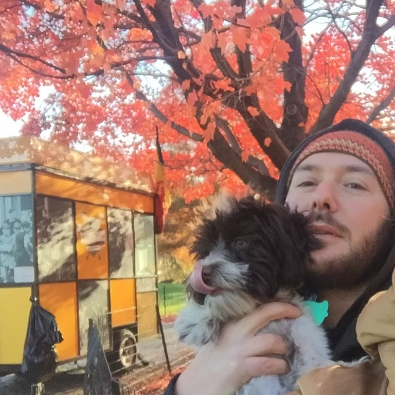 Francesco's dog day care