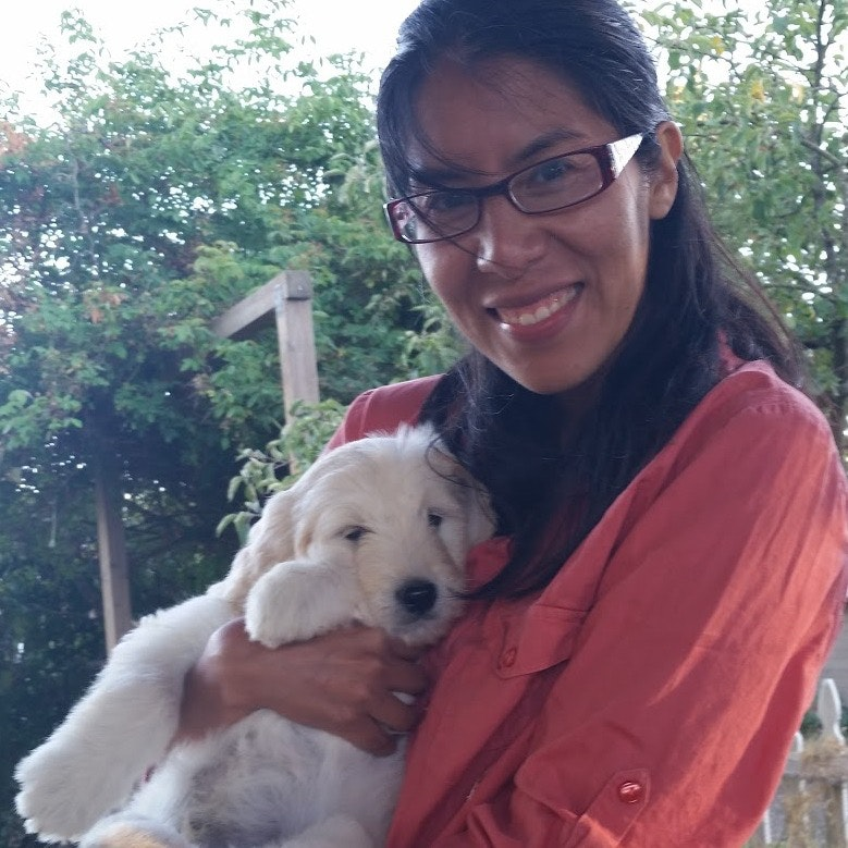 Naya's dog day care