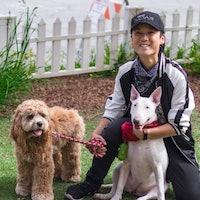 Jayern's dog boarding
