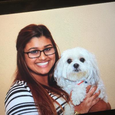 Kajal's dog day care