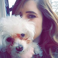 Kayla's dog boarding
