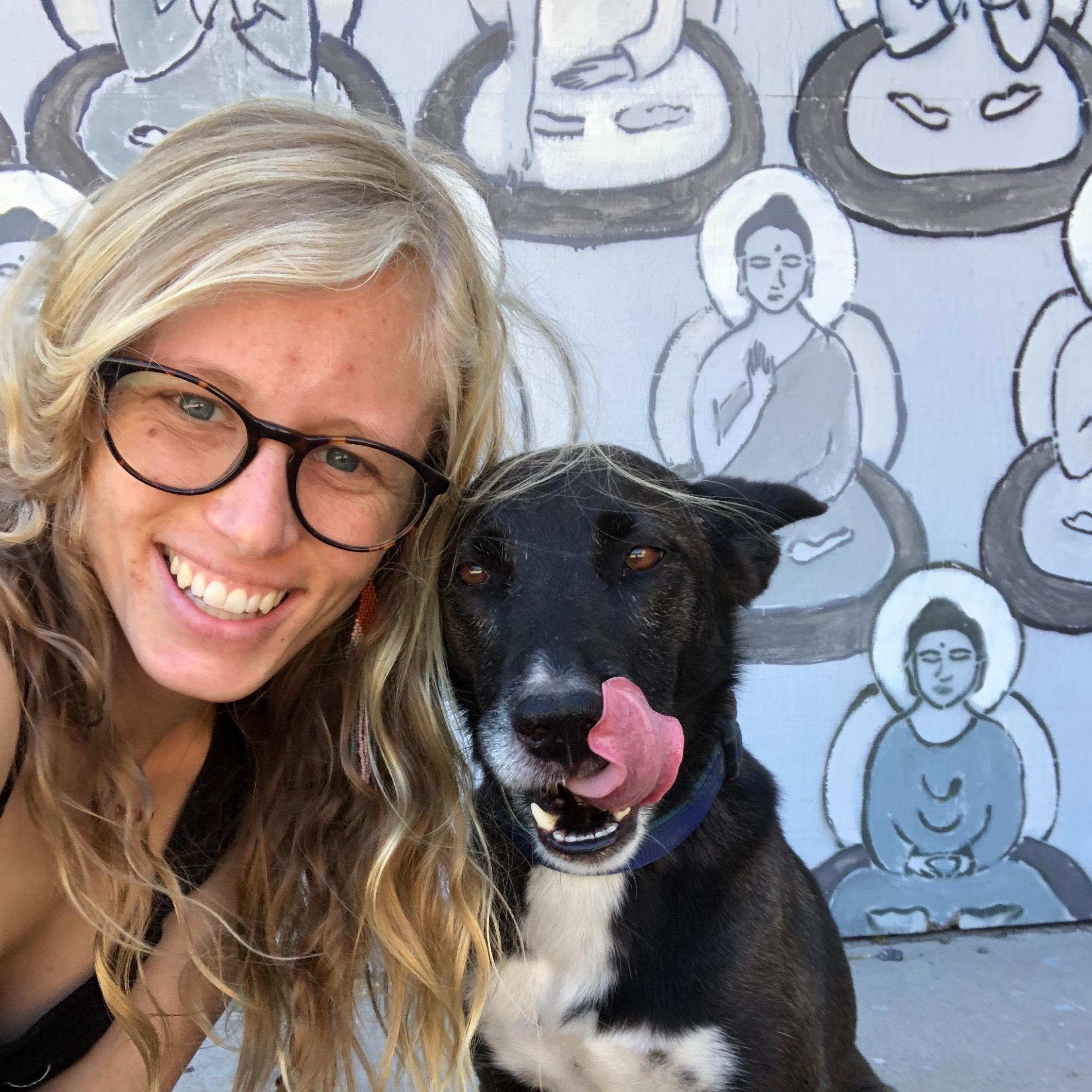 Brenna's dog day care